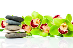 Green orchid and spa stones Royalty Free Stock Image