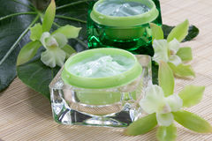 Green Orchids and Moisturising Cream Stock Photos