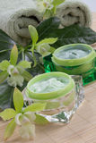 Green Orchids and Moisturising Cream. Closeup gorgeous blooming green colored Cattleyas orchid flowers and jars of cosmetics cream Stock Photos
