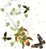 Green orchids and three butterflies stock illustration