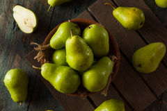 Green Organic Bartlett Pears Royalty Free Stock Photo