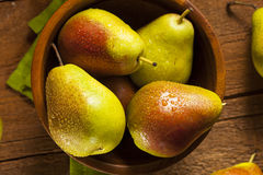 Green Organic Healthy Pears Stock Photos