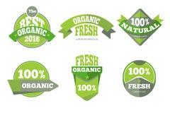 Green organic natural labels set Stock Images