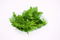 Green organic Parsley. On White Plate Royalty Free Stock Image