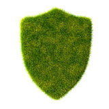 Green organic shield grass Stock Images