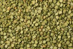 Green organic split peas close up Stock Photography