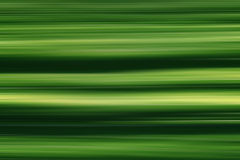 Green organic texture with lines Royalty Free Stock Photography