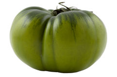 Green organic tomato Royalty Free Stock Photo