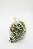 Green organic vegetable in plastic bag. Green organic spanich vegetable in plastic bag on white background Stock Photo