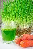 Green Organic Wheat Grass Shot ready to drink Royalty Free Stock Images