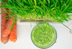 Green Organic Wheat Grass Shot ready to drink Stock Image