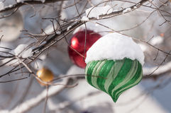 Green Ornament Royalty Free Stock Images