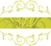 Green ornamental frame Royalty Free Stock Image