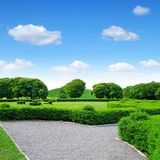 Green ornamental garden and sky Stock Images
