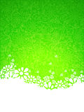 Green ornate background. Stock Photography
