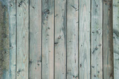 Green outdoor weathered wooden vertical planks Stock Photo