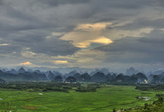 Green paddy fields,yangshuo guangxi Royalty Free Stock Image