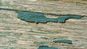 Green paint on bare wood Stock Image
