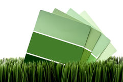 Green paint chip samples on green grass Stock Photo
