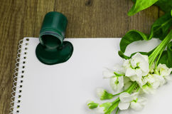 Green paint dripping on white, beautiful white blossom. Color of Spring Summer Royalty Free Stock Photos