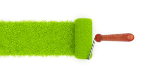 Green paint of grass. Roller  3D Stock Photos