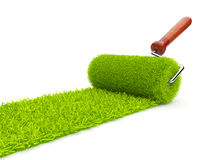 Green paint of grass. Roller 3D  on white Stock Photography
