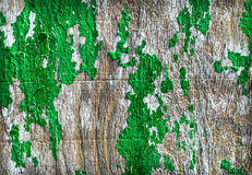 Green Paint Grunge Royalty Free Stock Photo