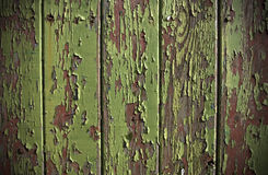 Green paint peeling from a wooden panel door. Showing the wood grain and old red painted surface royalty free stock photography
