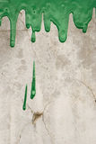 Green paint pouring. On vintage wall background Stock Images