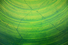Green paint on wall. Cracks green paint  on the wall Royalty Free Stock Image