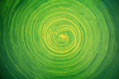 Green paint on wall. Background Royalty Free Stock Images