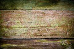 Green paint on the wood Royalty Free Stock Image