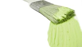 Green paintbrush. Green painter's brush isolated on white Stock Photos