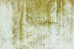 Green painted concrete wall texture with damaged and scratched surface. Abstract background Royalty Free Stock Images