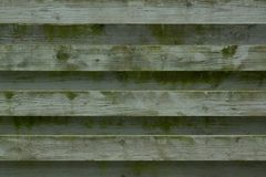 Green painted fence Stock Images