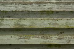 Green painted fence Stock Photography