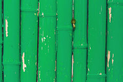 Green Painted old Bamboo Fence, wall background.  Stock Photo
