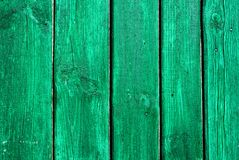 Green painted textural wooden old background. For your design Stock Image