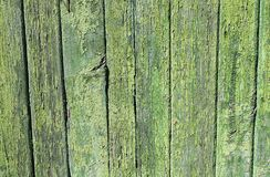 Green painted wood fence pattern Royalty Free Stock Image