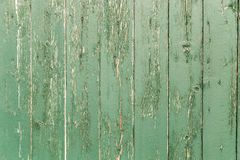 Green painted wooden wall Stock Image
