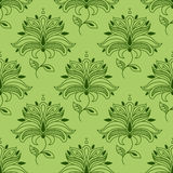 Green paisley seamless floral pattern Stock Images