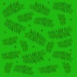 Green palm illustration Stock Photo