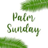 Green Palm leafs  icon. Vector illustration for the Christian holiday. Palm Sunday text handwritten font. For postcards, design, , prints, decoration, label Royalty Free Stock Photos