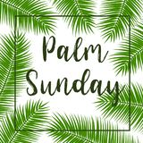 Green Palm leafs square frame. Vector illustration for the Christian holiday. Palm Sunday text handwritten font.