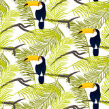 Green palm leaves and toucan bird seamless vector pattern. Royalty Free Stock Photo