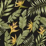 Green palm leaves yellow tropical flowers seamless black background royalty free illustration