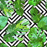 Green palm tree leaves on black and white geometric background. Vector summer seamless pattern. Stock Photos