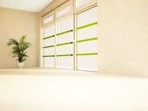 Green palm tree near a window Royalty Free Stock Photography