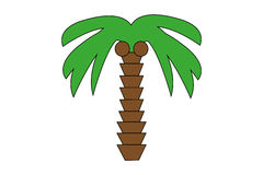 Green palm in tropical destination. Tropical green palm with coconuts stock illustration