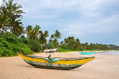 Green palms and fishermen's boats Stock Images